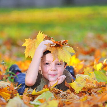 Fall Sensory Bin Ideas