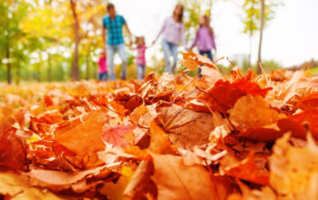Happy-family-in-autumn-park-theplayfulmoments