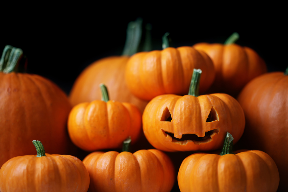 Jack-O-Lantern-surrounded-by-pumpkins-theplayfulmoments