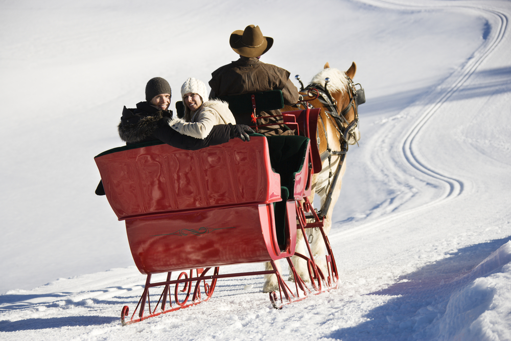 Young couple riding in a horse drawn sleigh in the snow