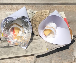 Solar Baking Apples Science Experiment