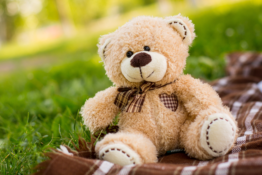Teddy Bear on brown picnic blanket