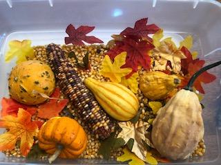 Fall Sensory Bin Ideas