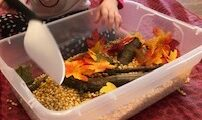 Toddler playing with fall nature sensory bin-theplayfulmoments