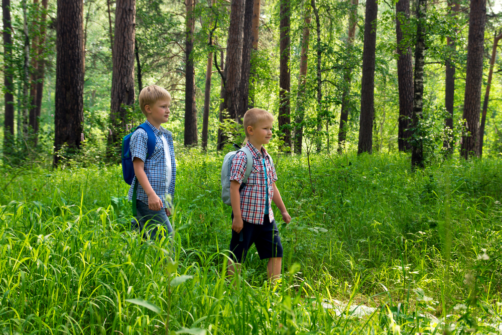 Two boys hiking outdoors